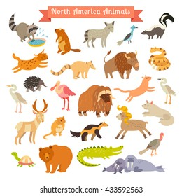 North America animals illustration. Isolated on white background