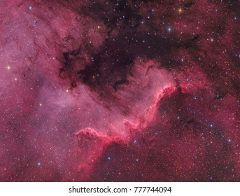 The North America Nebula in Cygnus (NGC 7000)