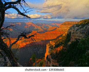 North America, United States, Arizona, Grand Canyon National Park