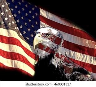 fdb7fe134e8e North American Bald Eagle on the United States of America Flag