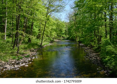 The North Branch of the Raritan River in Peapack-Gladstone, New Jersey.