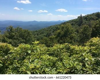 North Carolina Appalachian Trail on a Sunny day