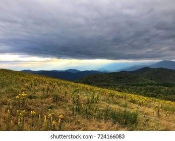 North Carolina View