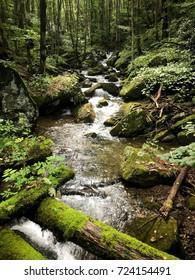 North Carolina Water