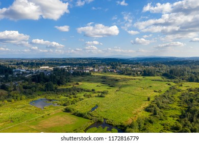 North Creek wetlands in Snohomish County, Washington