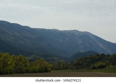 North face of the Mont Ventoux, Ventoux mountain. In the foreground fields, lavandula, forest. Spring in France, Provence, Vaucluse.