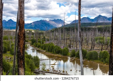 North Fork Flathead River Valley, River Amid Wildfire Debris at Low Water
