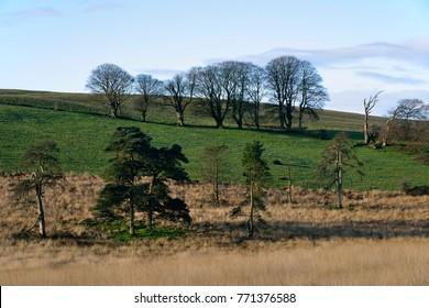 North Hill, Waldegrave Pool, Priddy, Mendip Hills, Somerset