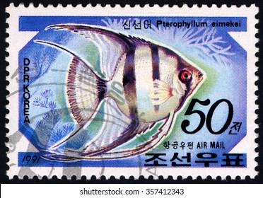NORTH KOREA - CIRCA 1991: A stamp printed in DPR  shows Pterophyllum Eimekei - Aquarium Fish series, circa 1991