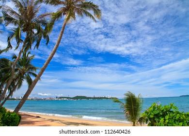 North Pattaya beach and Coconut, Chonburi, Thailand