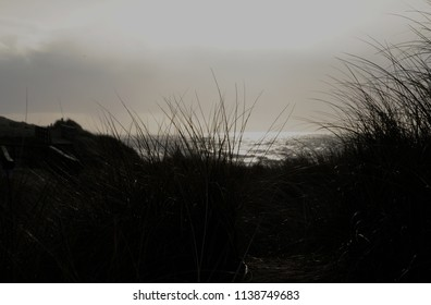 North Sea coast in January on the island of Sylt