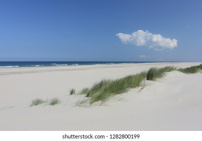 North sea sand beach and dune grass, island Ameland.