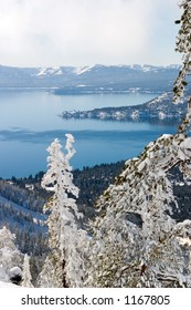 North shore of lake tahoe with snowy trees in foreground