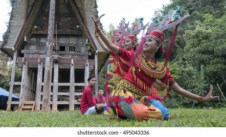 North Toraja, Indonesia-Aug 29, 2016:Toraja traditional dancer pose for camera with colourful costume.The dance called Sanda Oni perform with traditional Toraja instrument in Buntu Pune, North Toraja.
