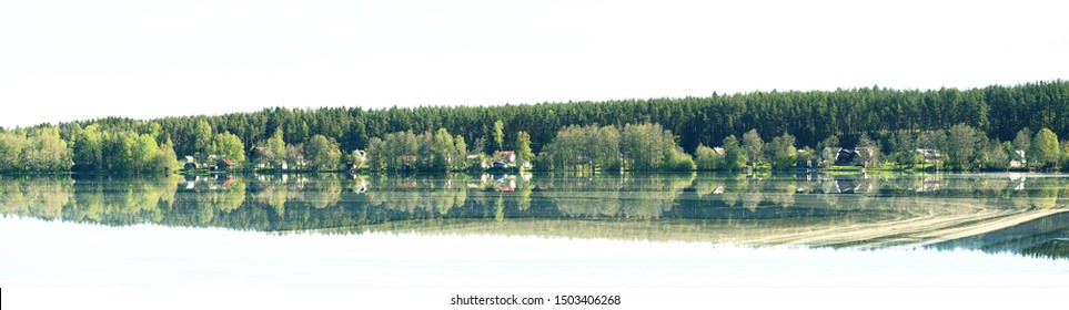 A north village on the shore of a peaceful lake surrounded by pine forests. On water, the mass of pine pollen as the time of flowering of coniferous trees. Wide panorama
