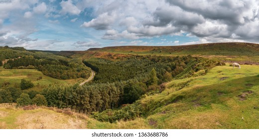 North York Moors landscape in Newtondale, seen from the Levisham Moor, North Yorkshire, England, UK