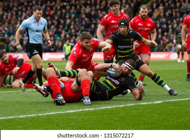 Northampton, UK. 16th February 2019. Tom Wood of Northampton Saints scores a try during the Gallagher Premiership Rugby match between Northampton Saints and Sale Sharks