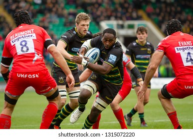 Northampton, UK. 16th February 2019. Api Ratuniyarawa of Northampton Saints runs with the ball during the Gallagher Premiership Rugby match between Northampton Saints and Sale Sharks