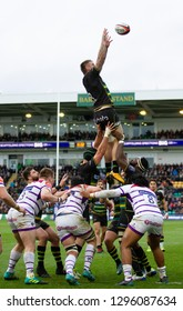 Northampton, UK. 26th January 2019. Teimana Harrison of Northampton Saints takes a line out ball during the Premiership Rugby Cup match between Northampton Saints and Leicester Tigers