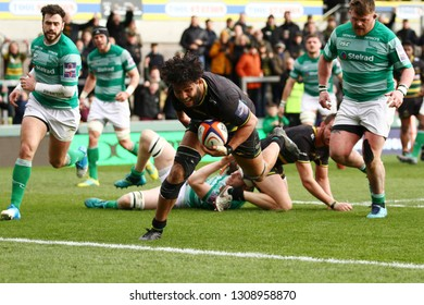 Northampton, UK. 9th February 2019. Lewis Ludlam of Northampton Saints scores a try during the Premiership Rugby Cup semi-final between Northampton Saints and Newcastle Falcons