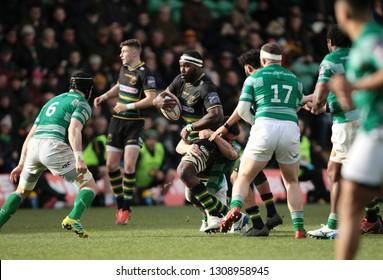 Northampton, UK. 9th February 2019. Api Ratuniyarawa of Northampton Saints is tackled during the Premiership Rugby Cup semi-final between Northampton Saints and Newcastle Falcons