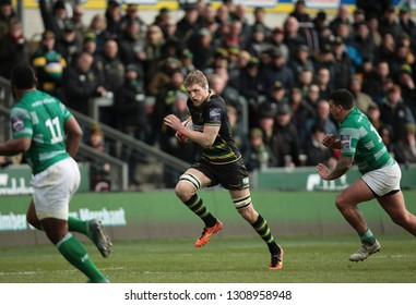 Northampton, UK. 9th February 2019. Jamie Gibson of Northampton Saints runs with the ball during the Premiership Rugby Cup semi-final between Northampton Saints and Newcastle Falcons