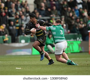Northampton, UK. 9th February 2019. Ahsee Tuala of Northampton Saints runs with the ball during the Premiership Rugby Cup semi-final between Northampton Saints and Newcastle Falcons