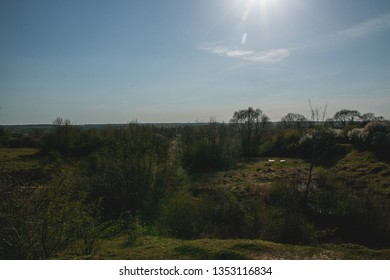 Northamptonshire,England- forrest view, clear blues sky, bright sun