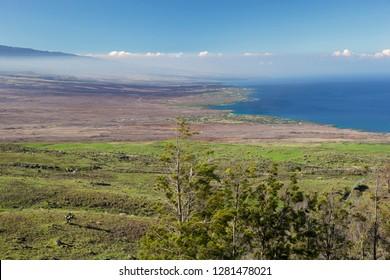 Northern Kohala mountain coast looking south where lush meets lava rock, Big Island, Hawaii