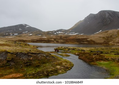 Northern landscape with lake and tundra
