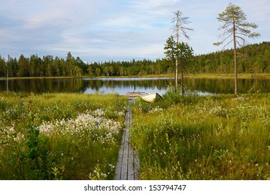 Northern landscape. Trail through swamp to lake