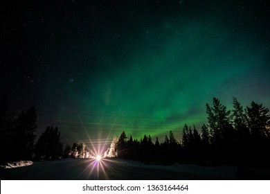 Northern light dancing in the sky over pine forest along the road.Aurora Borealis, Northern Lights, above forest.