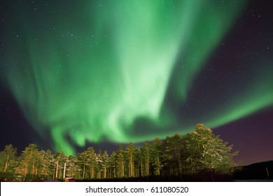 Northern light and forest near Alta, Norway