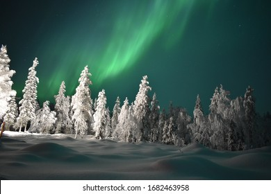 Northern lights after a snow storm