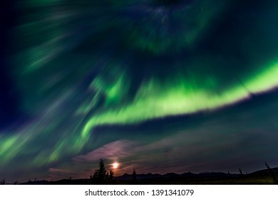 Northern lights - aurora borealis - dancing in the night sky with full moon rising on horizon