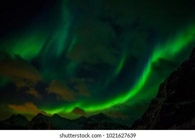 Northern lights (Aurora borealis). Norway, Lofoten