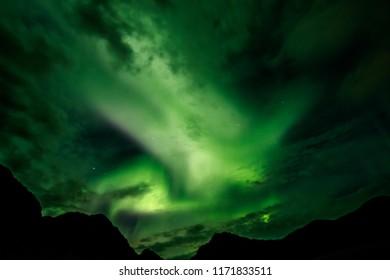 Northern lights, aurora borealis, on Lofoten Islands, Norway, 68 degrees North.