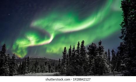 Northern Lights or Aurora Borealis shot in Alaska