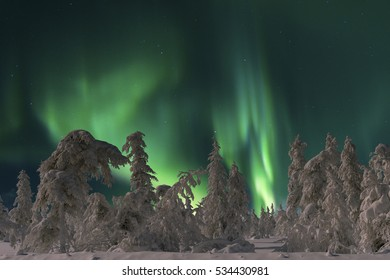 Northern Lights - Aurora borealis. Winter night scene