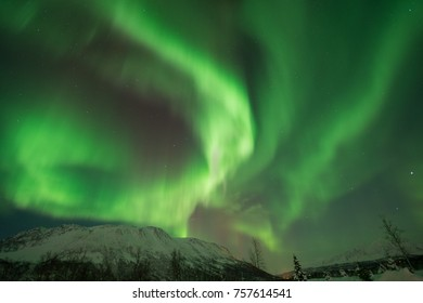 Northern Lights dancing over Snowy Mountain Tromso,Norway