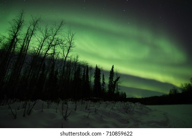 Northern lights in Fairbanks Alaska