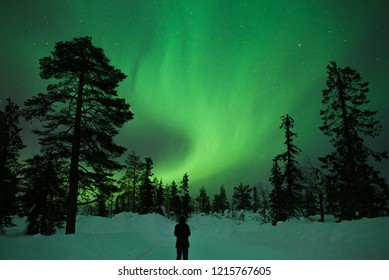 northern lights in Levi, Lapland