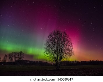 northern lights over latvia