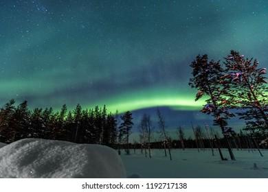 Northern Lights over snow-covered forest, Sweden