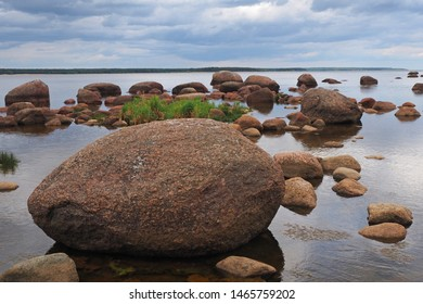 Northern nature. Landscape. shore of the Gulf of Finland on the Baltic sea