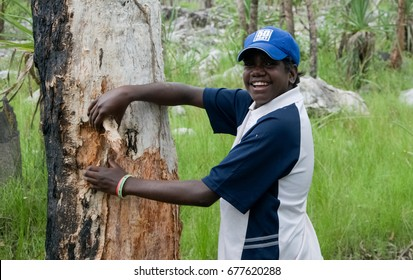 NORTHERN TERRITORY, AUSTRALIA - JANUARY 15 2009 : A young boy peeling of the bark of a paper bark tree in Northern Territory, Australia