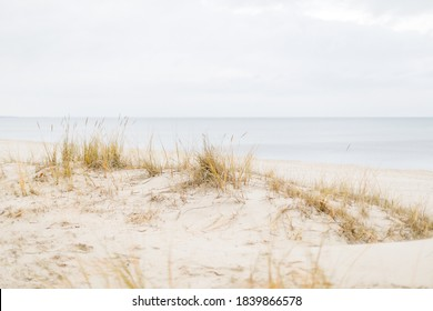 northsea beach with gras on a cloudy day, pastell colors