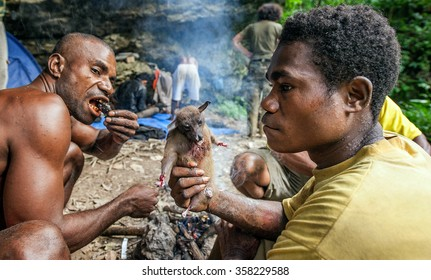 NORTH-WEST IRIAN JAYA, NEW GUINEA, INDONESIA -JANUARY 12, 2009: Locals of the island New Guinea have dinner the caught flying fox (fruit bat)