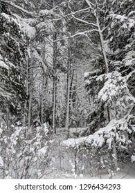 Northwoods winter wonderland in the Upper Peninsula of Michigan