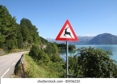 Norway - Hardangerfjord view with wildlife danger warning road sign. Seaside landscape of Norwegian fjord.